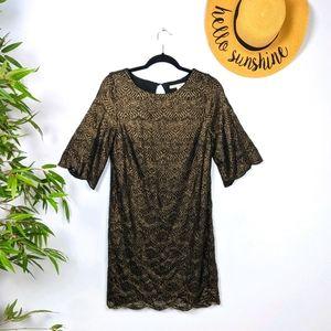 Miami Gold Scalloped Lace Half Sleeve Shift Dress